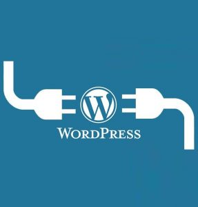 WordPress Plugins 1 287x300 - 10 پلاگین کاربردی جهت هر بار نصب وردپرس