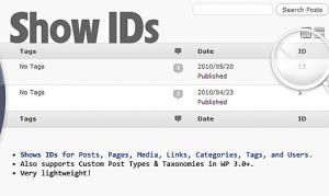 یافتن id دسته ای خاص در وردپرس
